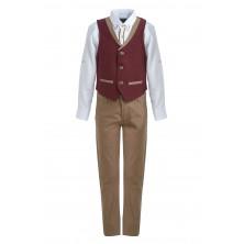 Костюм из жилета брюк , бабочки и  рубашки с длинным рукавом